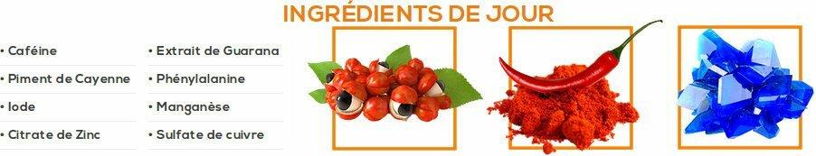 Composition phen24 : ingrédients naturels pour couper la faim et brûler les graisses