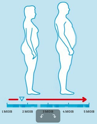 Evolution en perte de graisse abdominale : utiliser PhenQ au quotidien