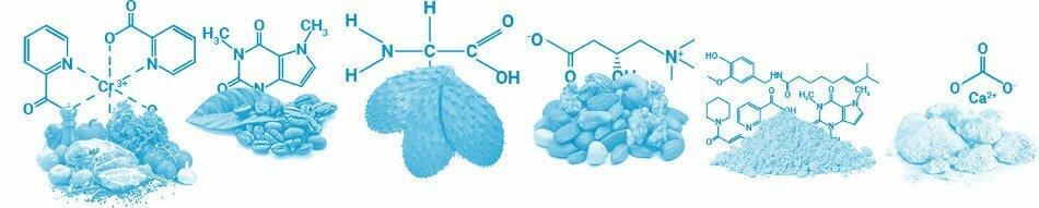 PhenQ en pharmacie : composition et liste des ingrédients naturels qu'on peut trouver sur des forums comme doctissimo