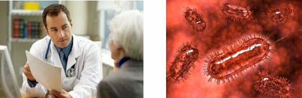 Recherches mérédith shirk sur les plantes anti déclencheur de graisse abdominale